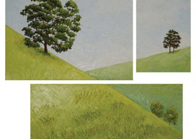 California Oaks (Oil Paints)