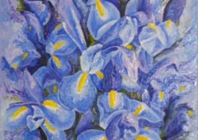 "Irises (Oils 24"" x 30"")"