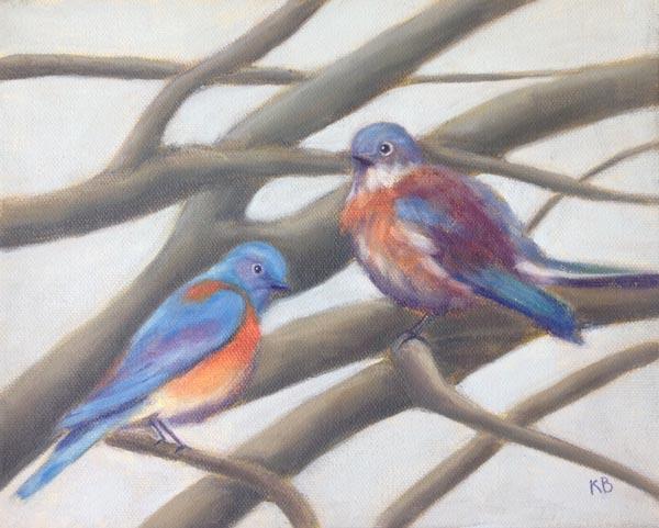 Western Bluebird (Male and Female) - Sacramento Plumage